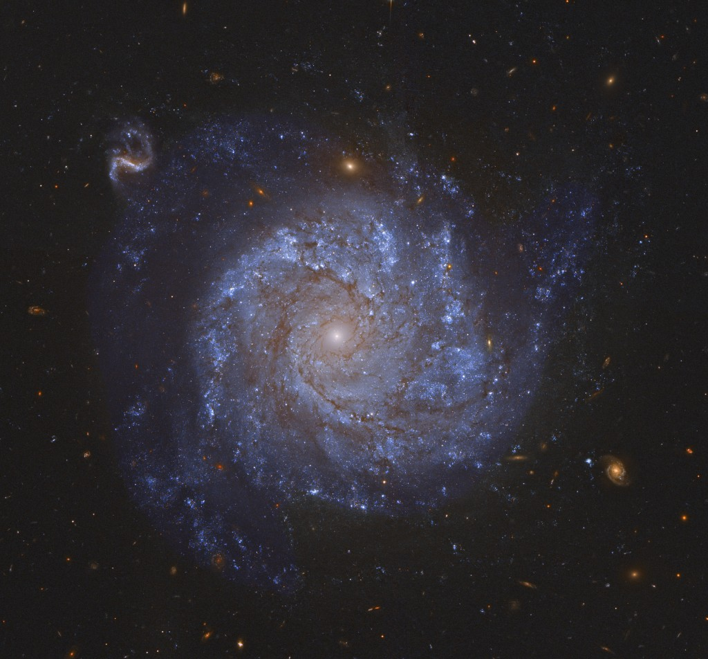 Spiral galaxy seen face-on