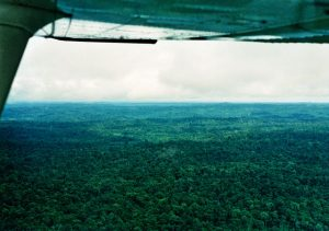Aerial view of Amazon Jungle beneath aircraft wing