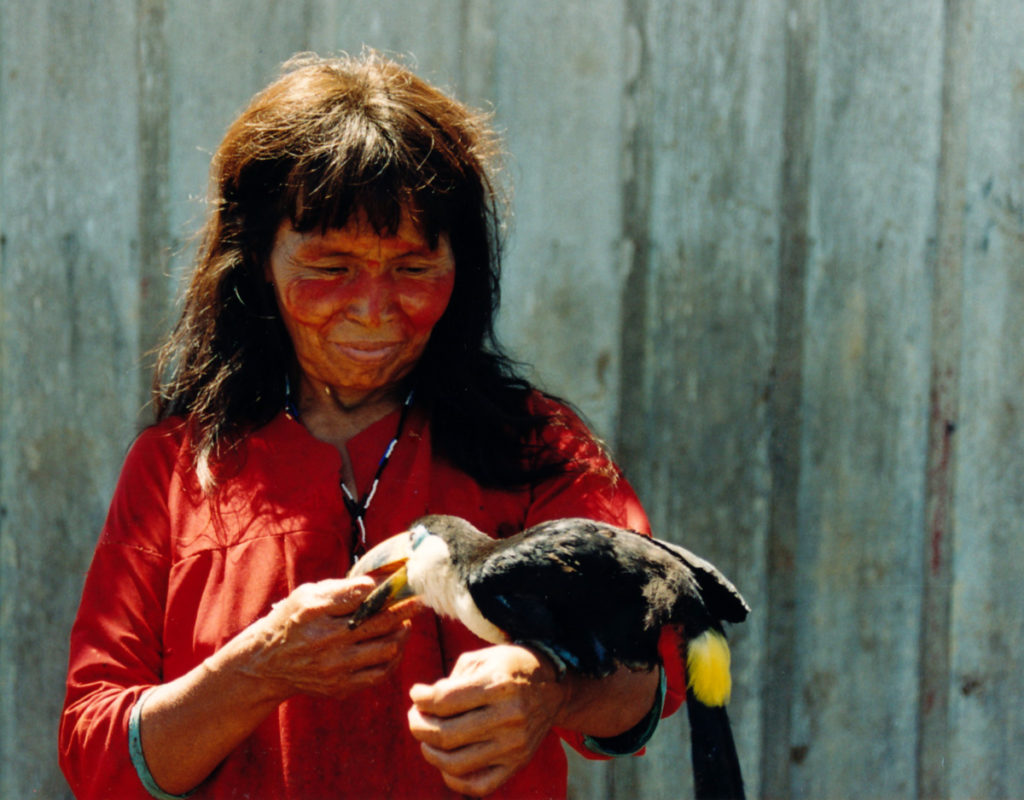 Shuar woman with pet toucan