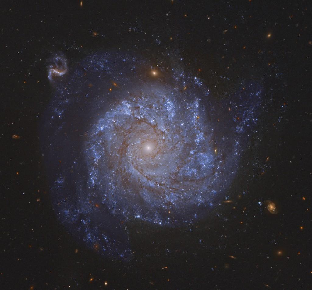 Spiral galaxy seen face-on